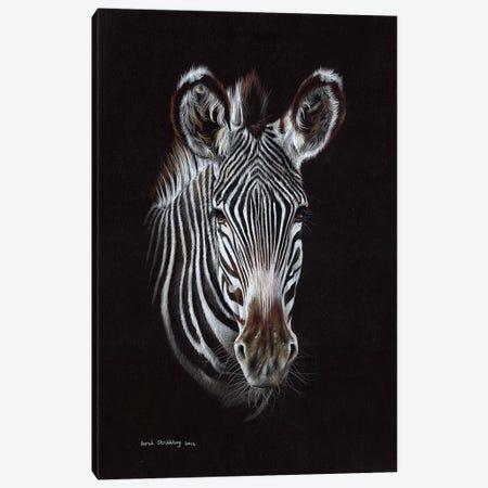 Zebra II Canvas Print #SAS119} by Sarah Stribbling Canvas Print