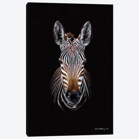 Zebra Black II Canvas Print #SAS120} by Sarah Stribbling Canvas Art