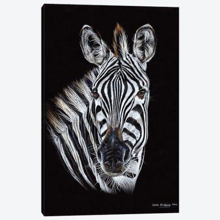 Zebra Black III Canvas Print #SAS121} by Sarah Stribbling Canvas Artwork