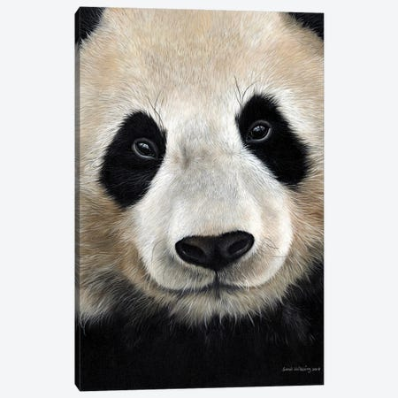 Giant Panda Canvas Print #SAS127} by Sarah Stribbling Art Print