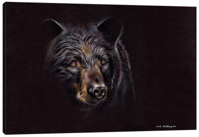Bear Black Canvas Art Print