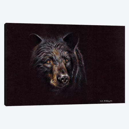 Bear Black Canvas Print #SAS12} by Sarah Stribbling Canvas Artwork