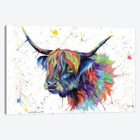 Multicolor Highland Cow Canvas Print #SAS131} by Sarah Stribbling Canvas Print