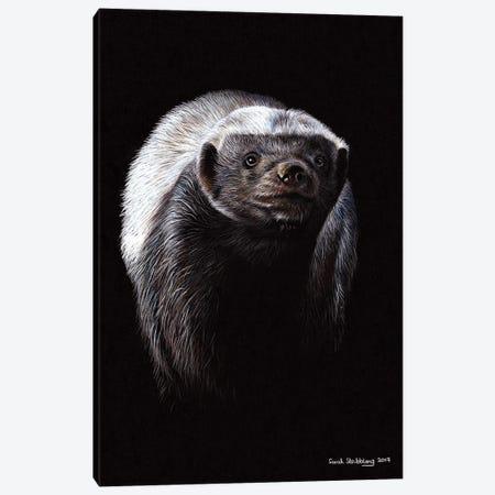 Honey Badger Canvas Print #SAS132} by Sarah Stribbling Canvas Art Print