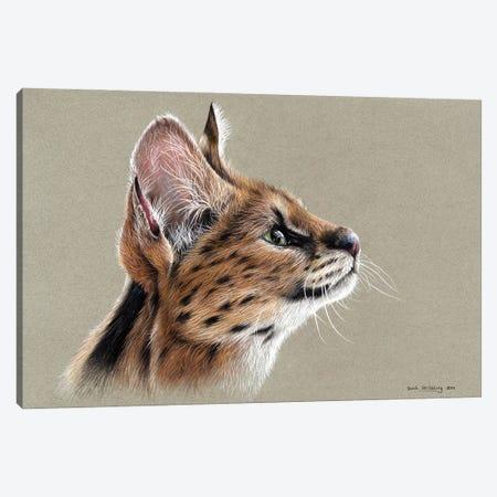 Serval Canvas Print #SAS135} by Sarah Stribbling Canvas Wall Art