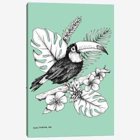 Toucan Canvas Print #SAS141} by Sarah Stribbling Canvas Art