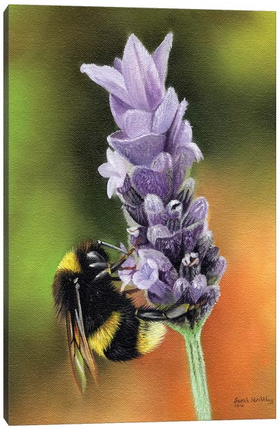 Bee On A Flower Canvas Art Print