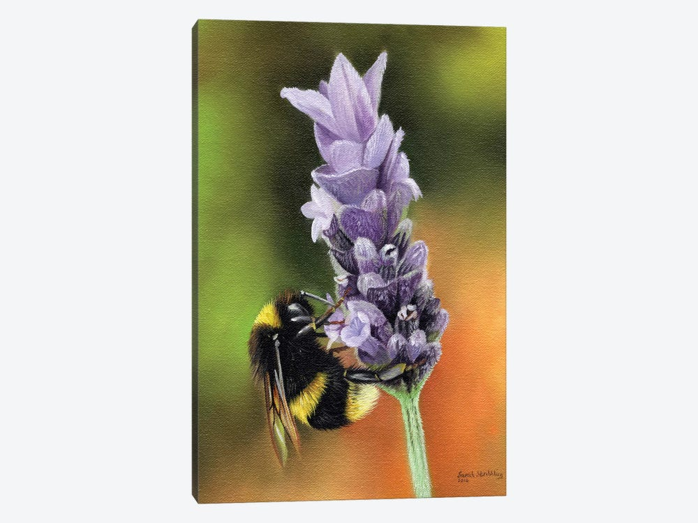 Bee On A Flower by Sarah Stribbling 1-piece Canvas Art
