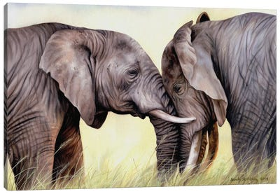 African Elephants Canvas Art Print