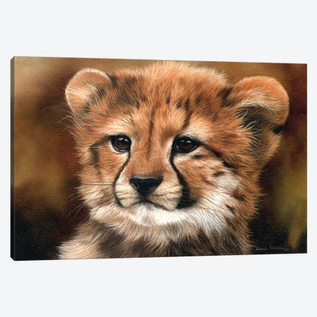 Cheetah Cub I Canvas Print #SAS25} by Sarah Stribbling Canvas Artwork