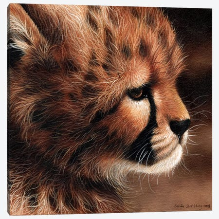 Cheetah Cub II Canvas Print #SAS26} by Sarah Stribbling Canvas Art