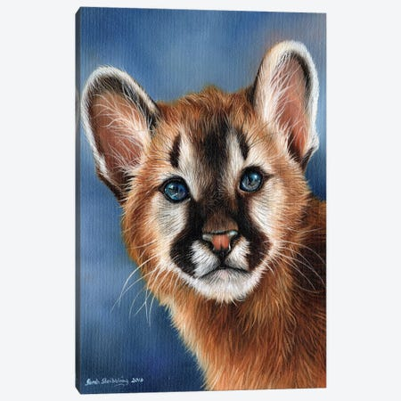 Cougar Cub Canvas Print #SAS31} by Sarah Stribbling Canvas Art
