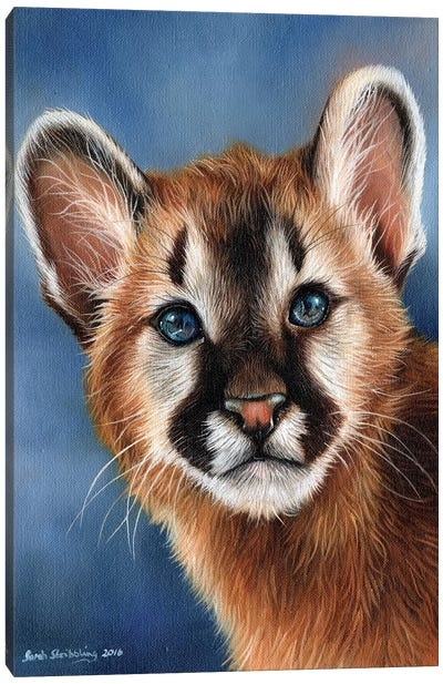 Cougar Cub Canvas Art Print