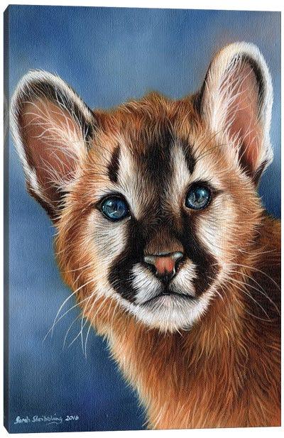 Cougar Cub Canvas Art Print
