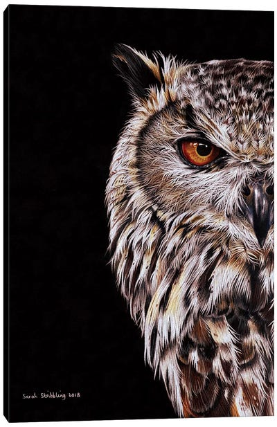 Eagle-Owl I Canvas Art Print