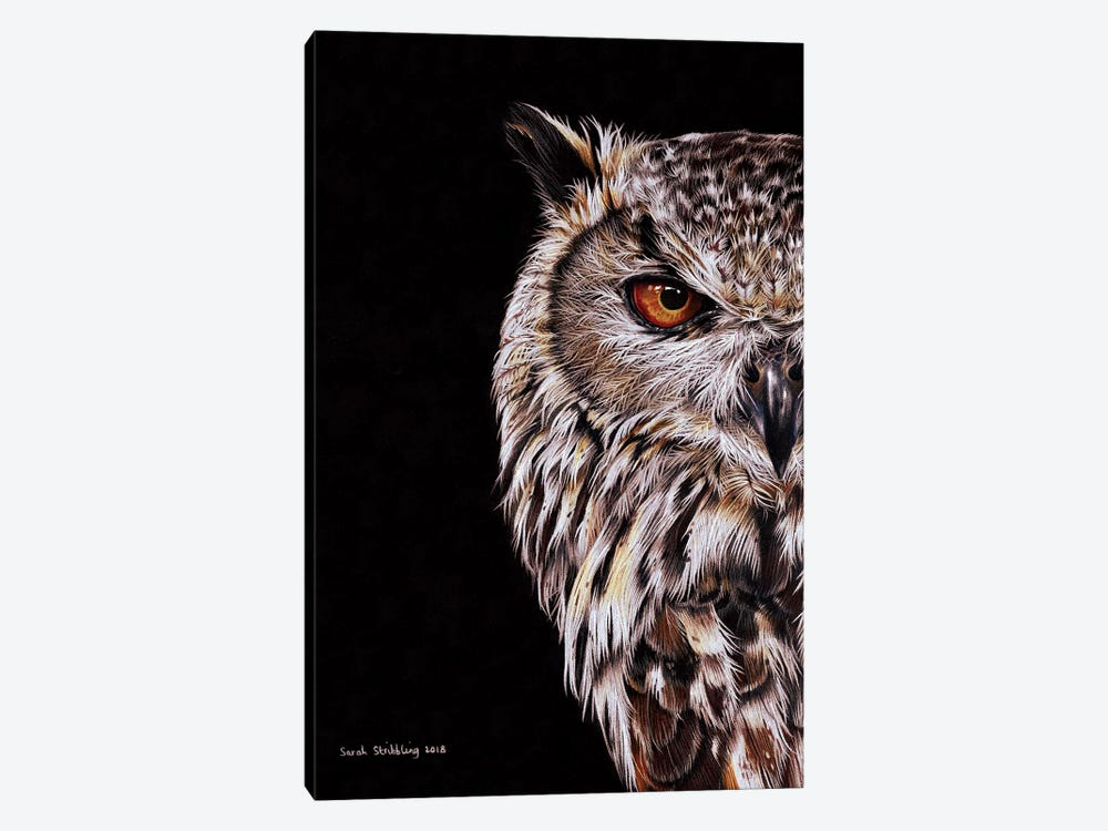 Eagle-Owl I by Sarah Stribbling 1-piece Canvas Wall Art