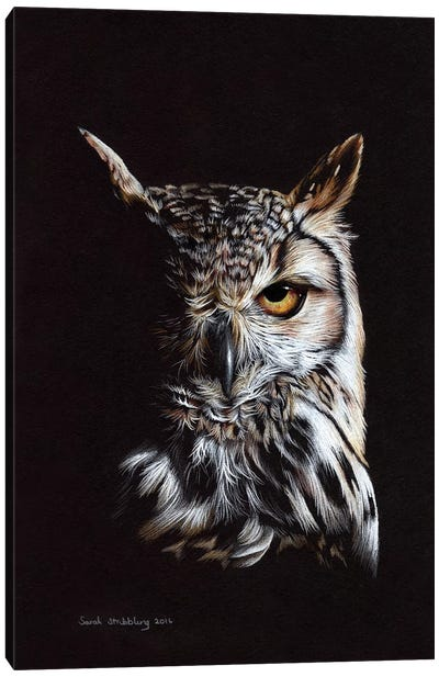 Eagle Owl II Canvas Art Print