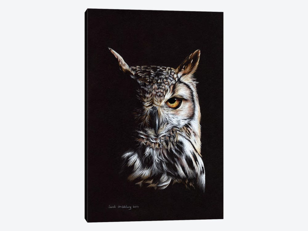 Eagle Owl II by Sarah Stribbling 1-piece Canvas Print
