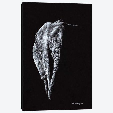 Elephant Black Canvas Print #SAS36} by Sarah Stribbling Canvas Art Print