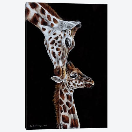 Giraffes I Canvas Print #SAS43} by Sarah Stribbling Canvas Print
