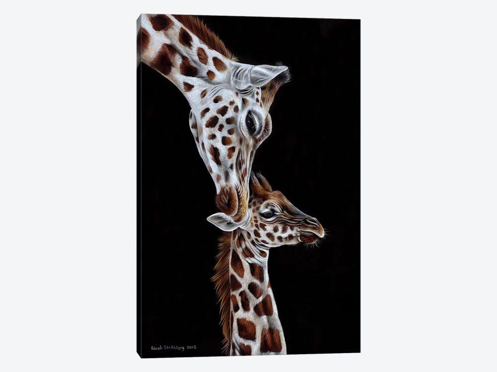 Giraffes I by Sarah Stribbling 1-piece Canvas Art