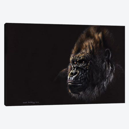Gorilla Pastel Canvas Print #SAS45} by Sarah Stribbling Canvas Wall Art