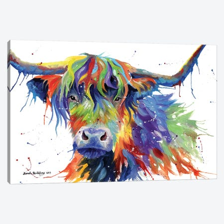 Highland Cow Colour Canvas Print #SAS49} by Sarah Stribbling Canvas Print
