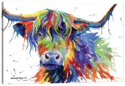 Highland Cow Colour Canvas Art Print