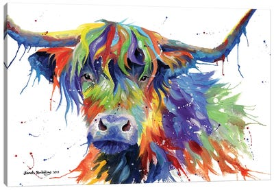 Highland Cow Colour Canvas Art Print
