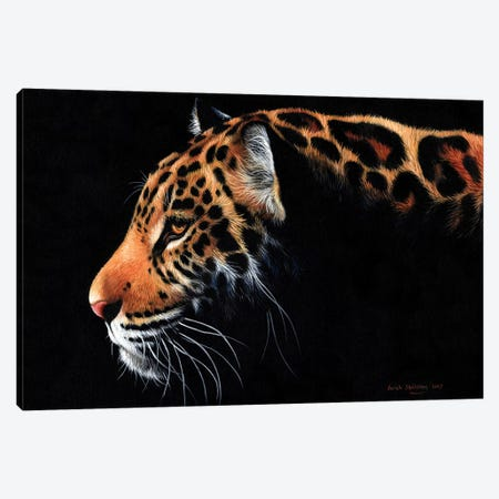 Jaguar Twilight 3-Piece Canvas #SAS53} by Sarah Stribbling Canvas Art