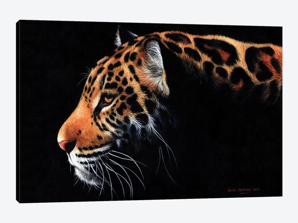 Jaguar Twilight by Sarah Stribbling 1-piece Art Print