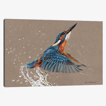 Kingfisher I Canvas Print #SAS54} by Sarah Stribbling Canvas Print