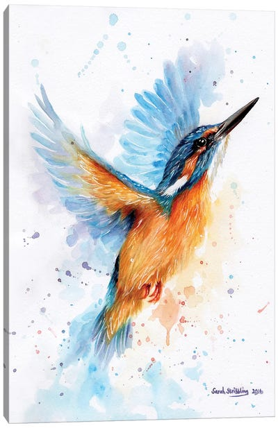 Kingfisher Watercolour Canvas Art Print