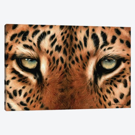 Leopard Eyes Canvas Print #SAS59} by Sarah Stribbling Canvas Wall Art
