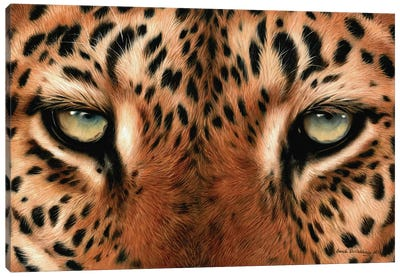 Leopard Eyes Canvas Art Print