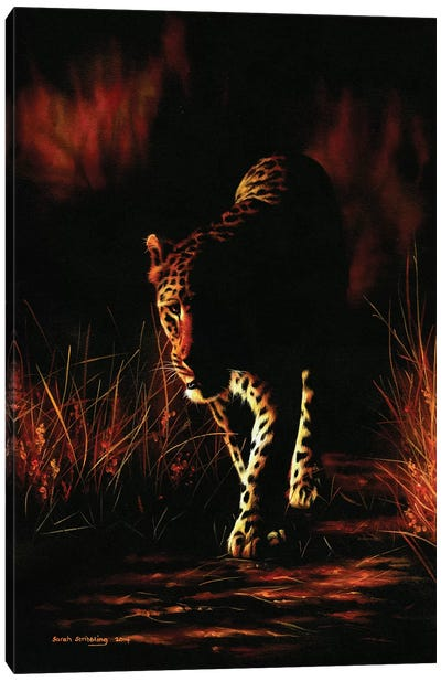 Leopard Walking Canvas Art Print