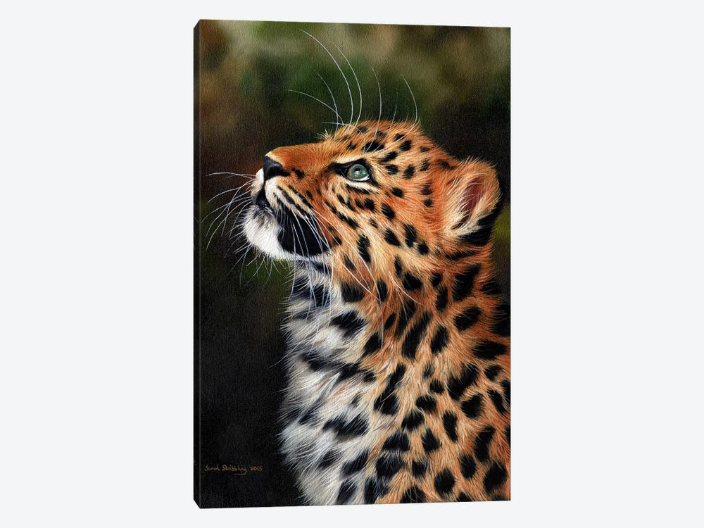 Leopard Cub by Sarah Stribbling 1-piece Art Print
