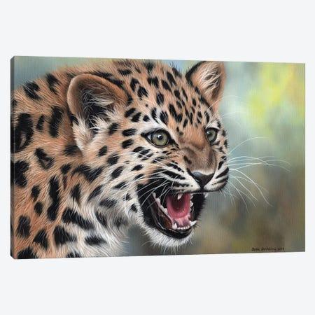 Leopard Cub II Canvas Print #SAS64} by Sarah Stribbling Canvas Artwork