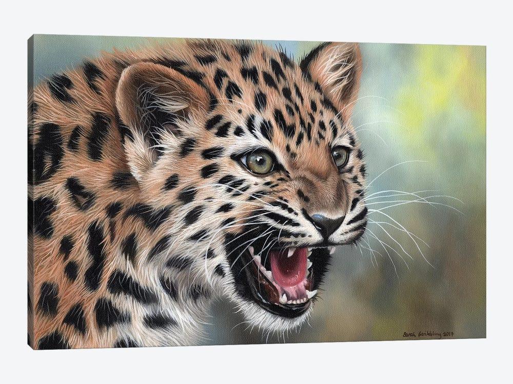 Leopard Cub II by Sarah Stribbling 1-piece Canvas Print