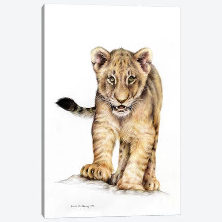 Lion Cub Canvas Print #SAS66} by Sarah Stribbling Canvas Wall Art