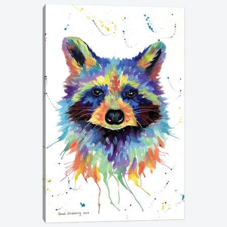 Raccoon II Canvas Print #SAS77} by Sarah Stribbling Canvas Art Print