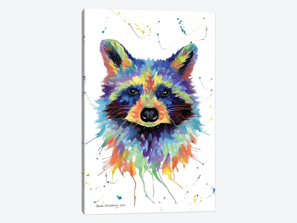 Raccoon II by Sarah Stribbling 1-piece Canvas Art Print