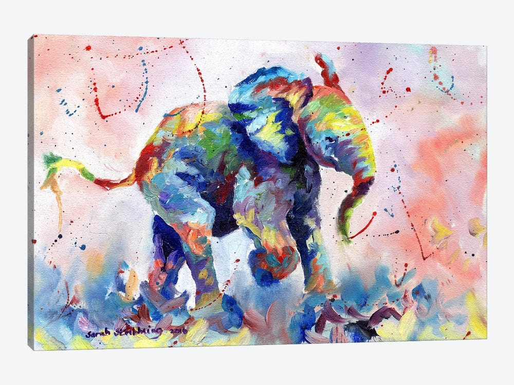 Baby Elephant by Sarah Stribbling 1-piece Canvas Art