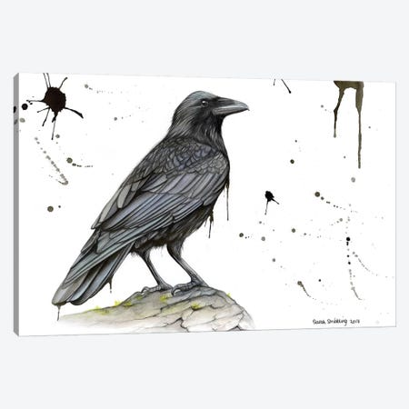 Raven On A Branch Canvas Print #SAS80} by Sarah Stribbling Canvas Print