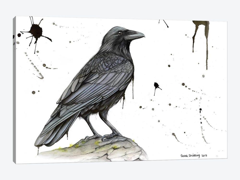Raven On A Branch by Sarah Stribbling 1-piece Art Print