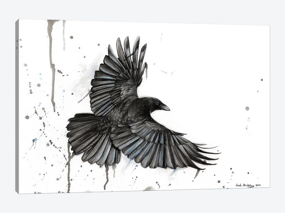 Raven Fly by Sarah Stribbling 1-piece Canvas Artwork