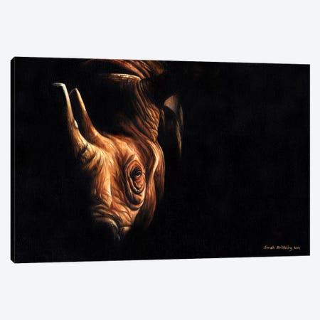 Rhino Twilight Canvas Print #SAS84} by Sarah Stribbling Canvas Wall Art