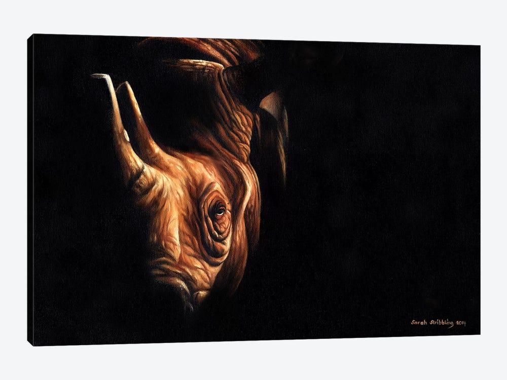 Rhino Twilight by Sarah Stribbling 1-piece Art Print