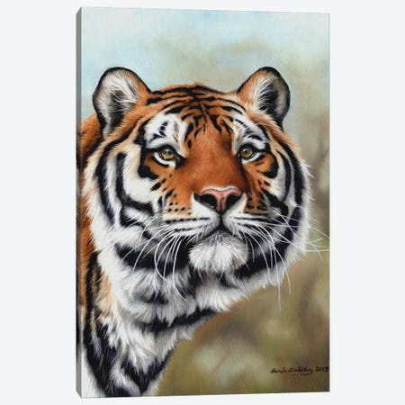 Siberian Tiger I Canvas Print #SAS85} by Sarah Stribbling Canvas Art