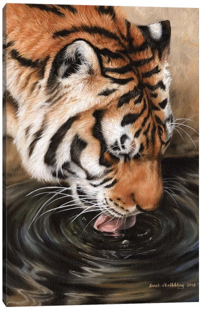 Siberian Tiger II Canvas Art Print